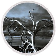 Round Beach Towel featuring the photograph Dead Tree In Death Valley 9 by Micah May