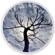 Dead Tree In St. Johns Antigua Round Beach Towel
