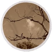 Round Beach Towel featuring the photograph Dead Wood by Rob Hans