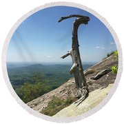 Decaying Tree At The Top Of Table Rock Trail South Carolina Round Beach Towel
