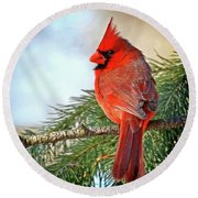 Round Beach Towel featuring the photograph December's Cardinal by Rodney Campbell