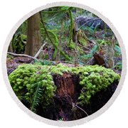 Decomposers Round Beach Towel