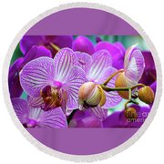 Round Beach Towel featuring the photograph Decorative Fuschia Orchid Still Life by Mas Art Studio