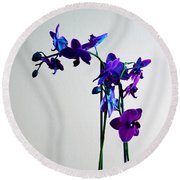 Round Beach Towel featuring the photograph Decorative Orchid Photo A6517 by Mas Art Studio