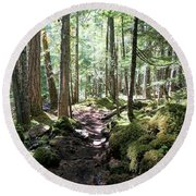 Deep In The Oregon Forest Round Beach Towel