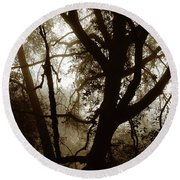 Deep In The Sequoia National Forest Round Beach Towel