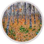 Deep In The Woods- Large Work Round Beach Towel