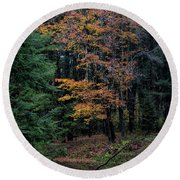 Deep In The Woods Round Beach Towel
