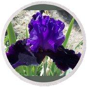 Deep Purple Iris Agape Gardens Round Beach Towel