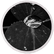 Round Beach Towel featuring the photograph Deep Refraction Between Leaves by Darcy Michaelchuk