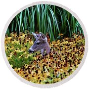 Deer And Daisies In Color Round Beach Towel by Peggy Collins