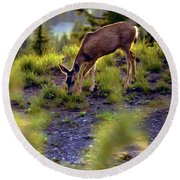 Deer At Crater Lake, Oregon Round Beach Towel by John A Rodriguez