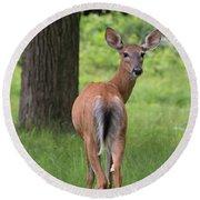 Deer Looking Back Round Beach Towel