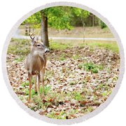 Deer Me, Are You In My Space? Round Beach Towel