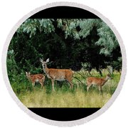 Deer Mom Round Beach Towel