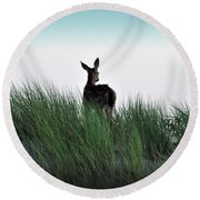 Deer Stop Round Beach Towel