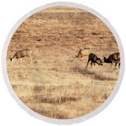 Deers Round Beach Towel