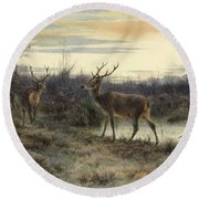 Deers In The Forest At Fontainebleau Round Beach Towel