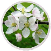 Delicate Apple Blossoms Round Beach Towel