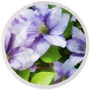 Delicate Climbing Clematis  Round Beach Towel by Judy Palkimas