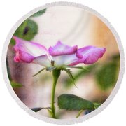 Round Beach Towel featuring the photograph Delicate by Joan Bertucci