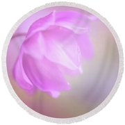 Delicate Pink Anemone Round Beach Towel