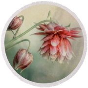 Delicate Red Columbine Round Beach Towel