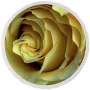 Delicate Rose Petals Round Beach Towel