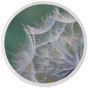 Delicate Seeds Round Beach Towel