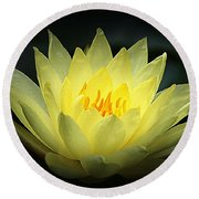 Delicate Water Lily Round Beach Towel by Lori Seaman