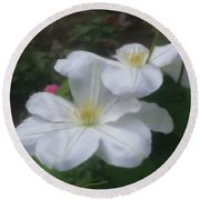 Delicate White Clematis Pair Round Beach Towel