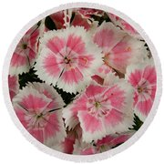 Round Beach Towel featuring the photograph Delightful Dianthus by Jean Noren