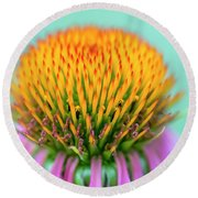 Depth Of Field Round Beach Towel