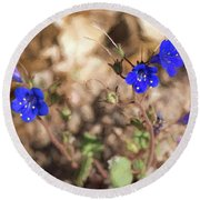 Desert Blue Bells At Joshua Tree National Park Round Beach Towel by Penny Lisowski