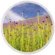 Desert Candles At Carrizo Plain Round Beach Towel