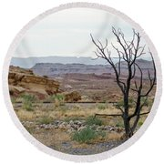 Round Beach Towel featuring the photograph Desert Colors by Margaret Pitcher