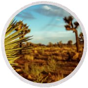 Desert Fan Round Beach Towel