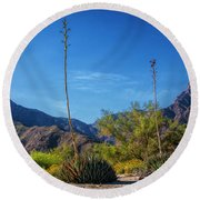 Round Beach Towel featuring the photograph Desert Flowers In The Anza-borrego Desert State Park by Randall Nyhof