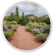 Round Beach Towel featuring the photograph Desert Fresh by Margaret Pitcher