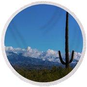 Desert Inversion Cactus Round Beach Towel