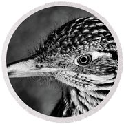 Desert Predator, Black And White Round Beach Towel