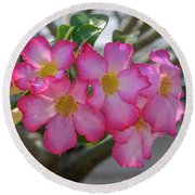 Desert Rose Or Chuanchom Dthb2105 Round Beach Towel