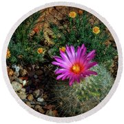 Desert Splash Round Beach Towel by Elaine Malott