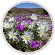 Desert Super Bloom 2017 Round Beach Towel by Peter Tellone