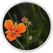 Round Beach Towel featuring the photograph Desert Wildflower 2 by Penny Lisowski