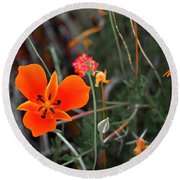 Round Beach Towel featuring the photograph Desert Wildflowers by Penny Lisowski