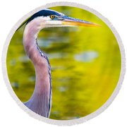 Round Beach Towel featuring the photograph Details Of A Great Blue Heron  by Parker Cunningham