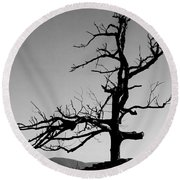 Devoid Of Life Tree Round Beach Towel