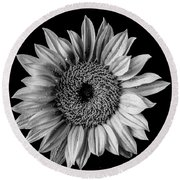Dew Covered Sunflower In Black And White Round Beach Towel