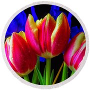 Dew Covered Tulips And Iris Round Beach Towel